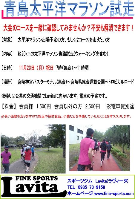 太平洋マラソン試走会2015POP2.jpg