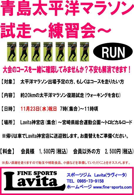 太平洋マラソン試走会2016POP.jpg